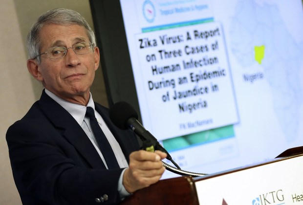 Dr. Anthony Fauci, Director of the NIH's National Institute of Allergy and Infectious Diseases, speaks about the Zika virus during an Aug. 11 press conference in Washington, D.C.