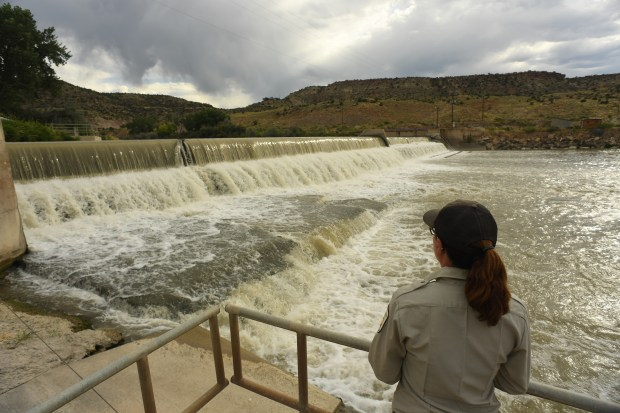 USFW Biological technician and CRFP crew leader Britney McKelvey looks at the Redlands Water and Power Dam on the Gunnison River on August 16, 2016 in Grand Junction. The dam, which was built in 1918, is as long as a football field and 8 1/2 feet high. For 78 years the damn had kept endangered fish from being able to spawn naturally upstream, because they couldn't get past the damn. This caused a large decline in fish populations below the damn The USFW service built a fish ladder in 1996 that has helped to revive the populations of Colorado's native fish such as this Pike Minnow, Bonytail, Humpback Chub and the Razorback Sucker. The fish ladder has also helped officials with the US Fish and Wildlife Service Colorado River Fish Project (CRFP) to be able to take out non-native fish that are leading to the decline in native fish as well.