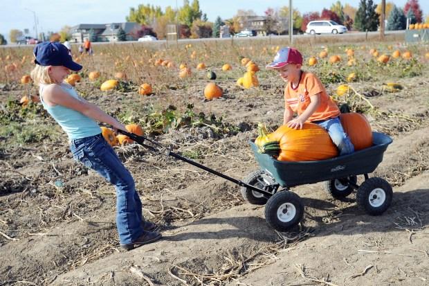 Jade Boyer, left, pulls a pumpkin-laden wagon while her brother Tristen Boyer catches a ride at Jake's Farm, 4620 E. Eisenhower Blvd., in Loveland in 2014.