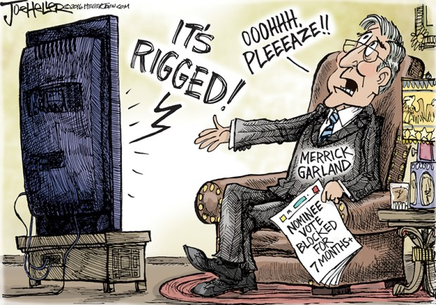 Image result for cartoons of trump on voter fraud
