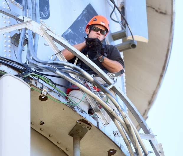 Brady Thomas, with the Greeley Fire Department, holds on tight to the cat after successfully rescuing it off a ladder on the top of the LaSalle water tower.