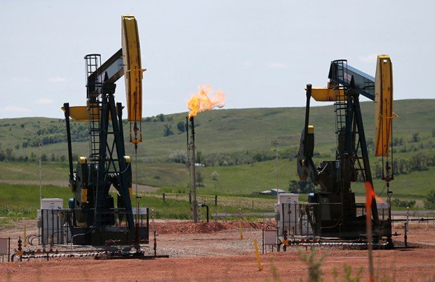 The Bureau of Land Management issued rules in November limiting the amount of natural gas, mostly methane, that can be vented or flared into the atmosphere.