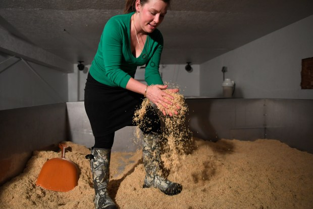 Grouse Malting Company founder, owner and maltstress Twila Soles breaking up clumps from the malt rootlets