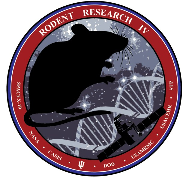 Rodent Research IV is one of the projects heading to space on the SpaceX Dragon capsule, scheduled to launch Feb. 18, 2017 in Florida. Scientist Melissa Kacena, who is originally from Colorado, is sending 40 mice to the International Space Station to study how bones heal in a weightless environment. She asked brother Doug Kacena, a Denver artist, to design the patch.