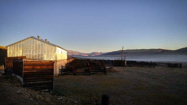 "Early morning at the Horse Barn at Buffalo Peaks Ranch, in South Park, near Fairplay​. The ranch is part of the Rocky Mountain Land Library, an effort by Jeff Lee and Ann Martin to create what they've called a literary ""home on the range"" to Colorado."