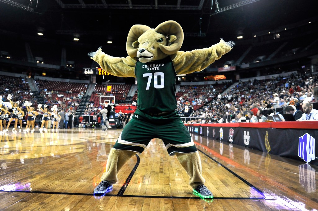 Colorado State Basketball Gets NIT Bid Prepares For