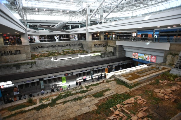 DIA wants to remove the C Concourse's Interior Garden, but