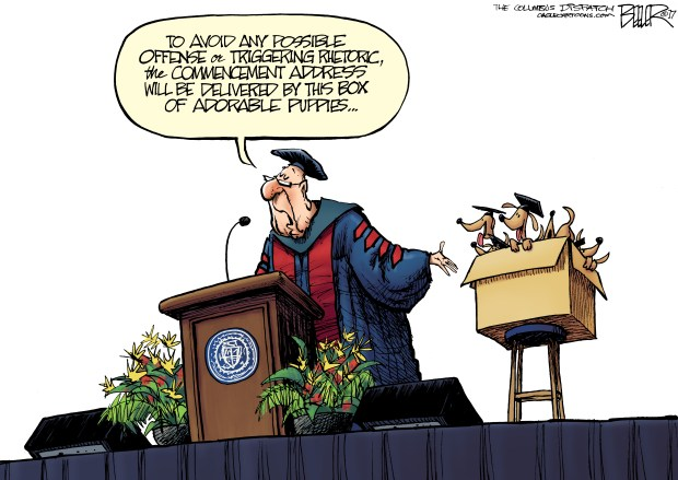 graduation-2017-cartoon-beeler