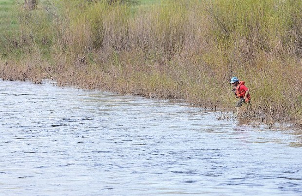 Routt County Search and Rescue member Harry Sandler searched the shoreline near Routt County Road 33A just west of Steamboat Springs. Rescuers were searching for 22-year old man who jumped into the river downtown to evade the police.