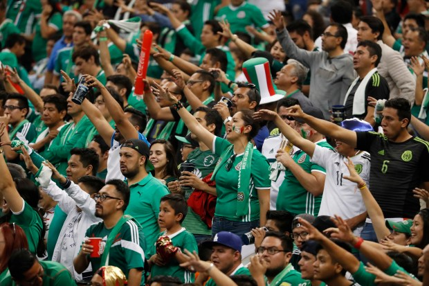 Fans of Mexico national team cheer ...