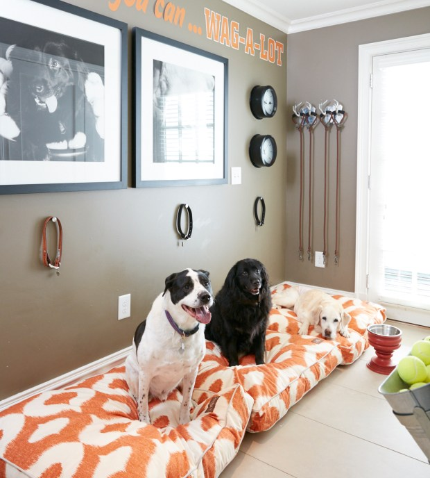 Interior designer Vern Yip's dogs at his home in Atlanta. By creating a dedicated space for pets in a mudroom or laundry room, homeowners can keep their pets' items organized and have a pleasant space to put pets if guests who aren't comfortable with animals come to visit.