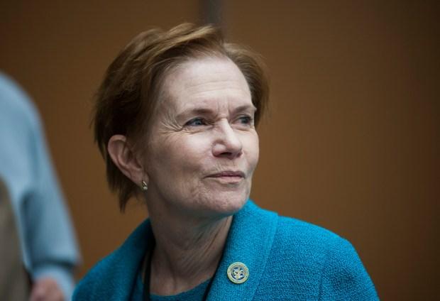 Lt. Governor Donna Lynne looks on ...