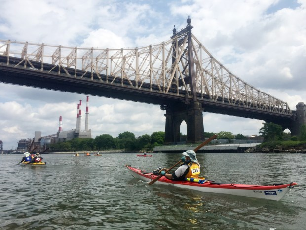 Paddlers pass under the Queensboro Bridge.
