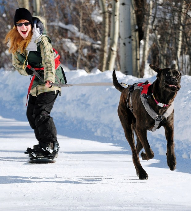 Ruffwear's Omnijore Dog Joring System lets Fido lead the way.