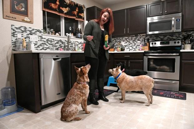Jen Holtus gives treats to newly ...