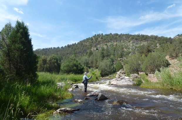 Roger Hill fishes the South Platte. The lifelong fisherman has sued an Arkansas River landowner, hoping to spur changes and clarity in Colorado's murky stream access laws.