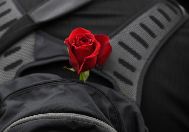 A single red-rose in a backpack ...