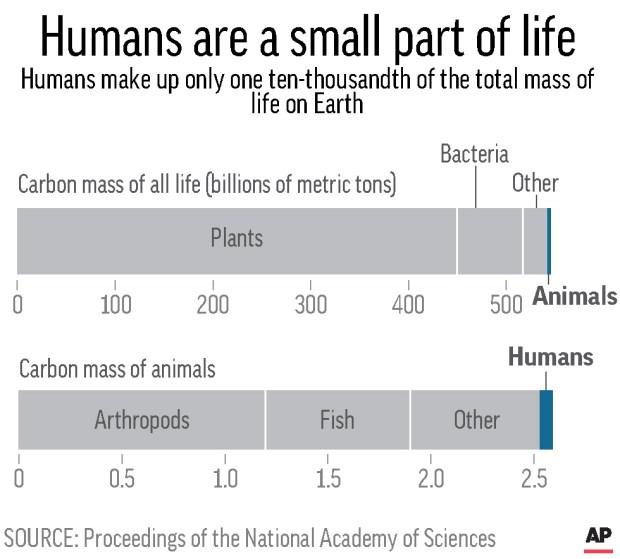 Chart shows breakdown of carbon mass by types of life in billions of metric tons