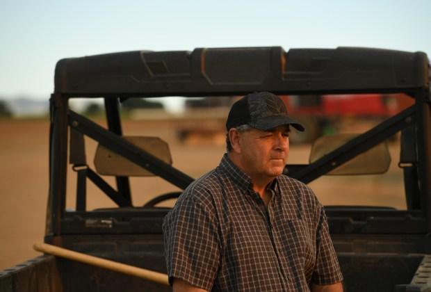 Cleave Simpson grows alfalfa at his ...