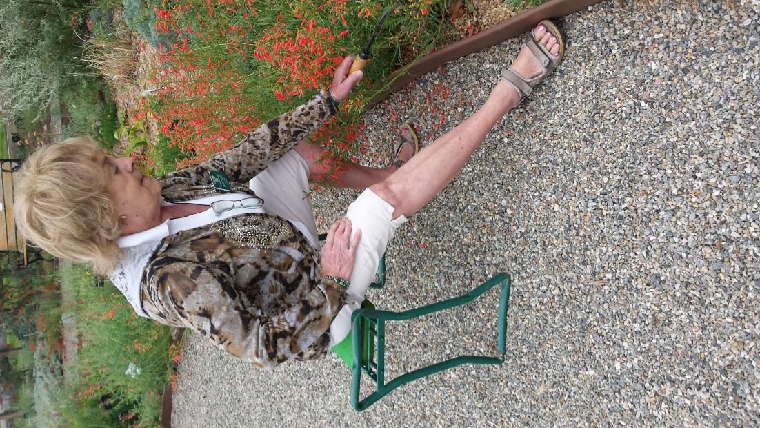 gardener sitting on a stool