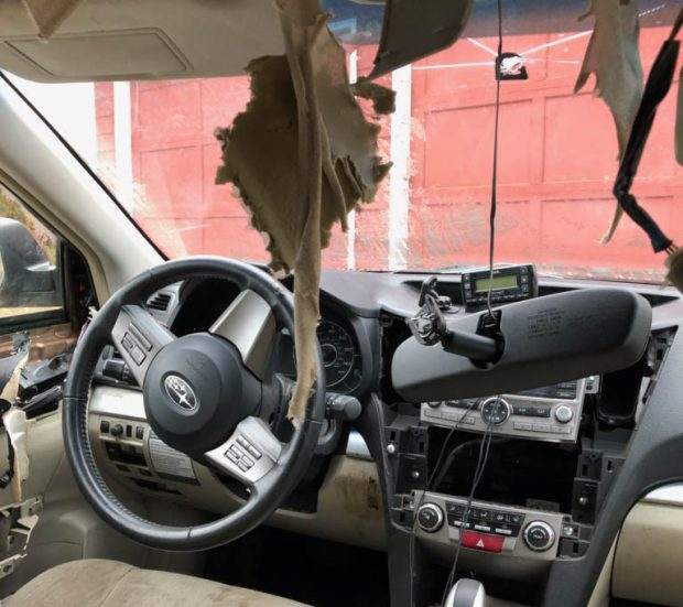 Steamboat bear breaks into Subaru, causes extensive damage
