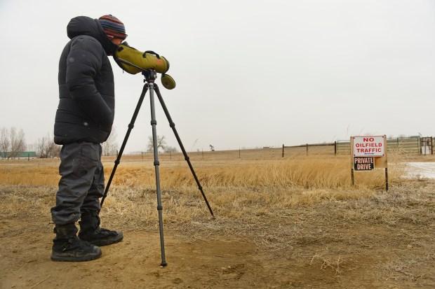 Dana Bove, with Front Range Nesting ...