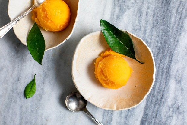 Tangerine sorbet featuring a bit of ...