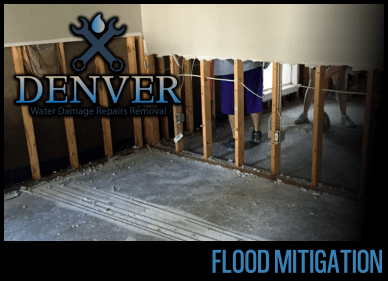 flood mitigation 3