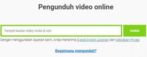 Tampilan Pengunduh Video Online Savefrom.net