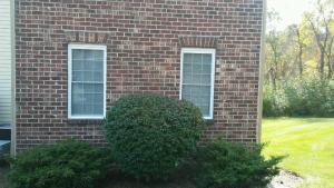 New-Windows-Williamsburg