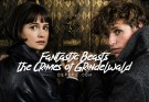 fantastic beasts, fantastic beasts the crimes of grindelwald, the crimes of grindelwald, depepi, depepi.com, teaser trailer, trailer