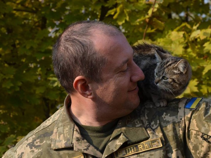 Cats in ATO: the best for 2016 - Photo 6