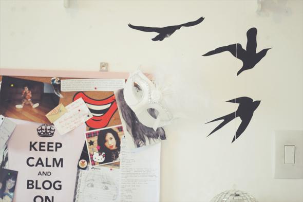 andorinhas-parede