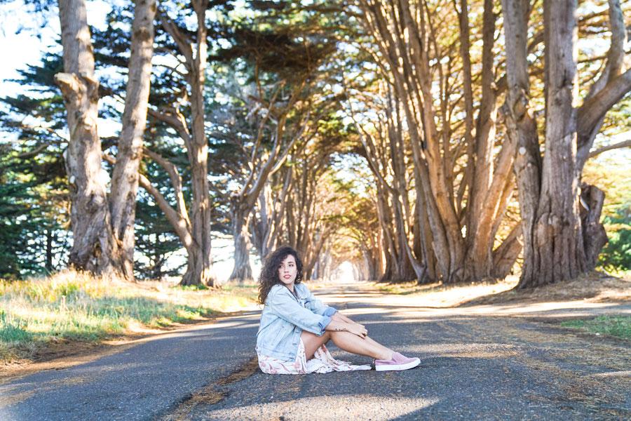 tree-roadtrio-sanfrancisco