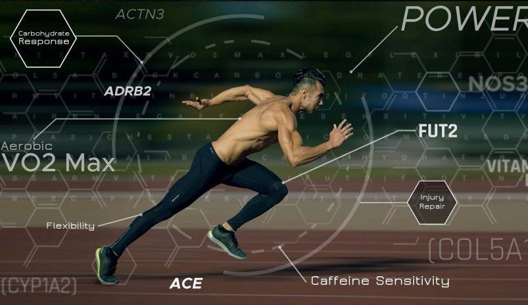 Influencia de las hormonas en el rendimiento deportivo