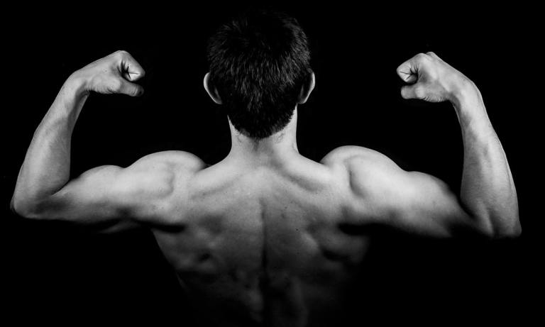 Descubre los mejores ejercicios con peso corporal para bíceps