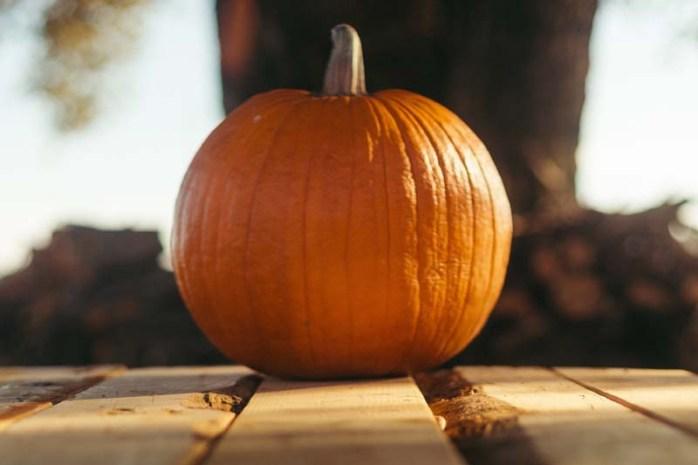 ways-of-using-pumpkin