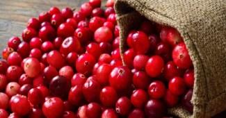 boost-immunity-cranberry