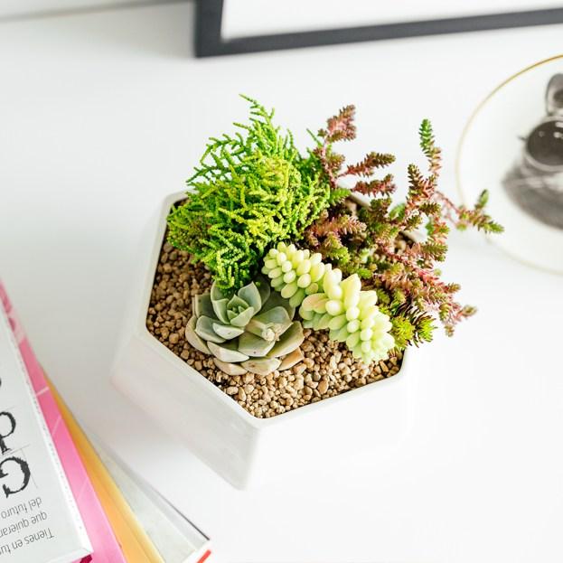 Accesorios para un escritorio inspirador y productivo
