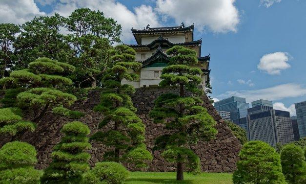 Visitando el Palacio Imperial de Tokio