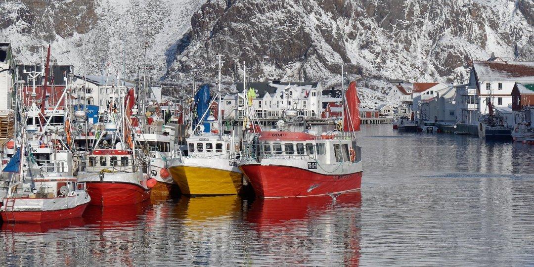 Barcos de pesca en Heimsundet