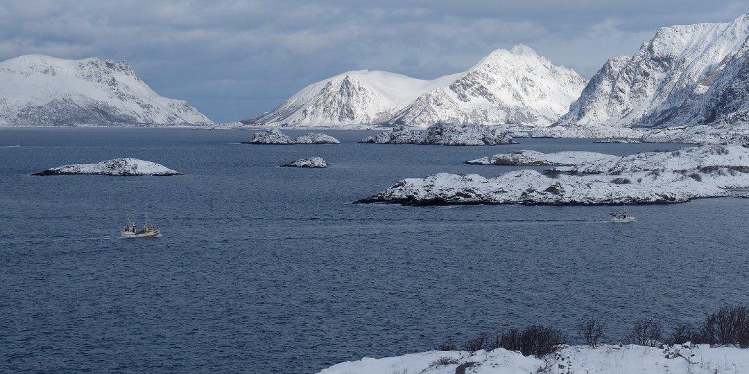 Pesqueros regresando a Henningsvær
