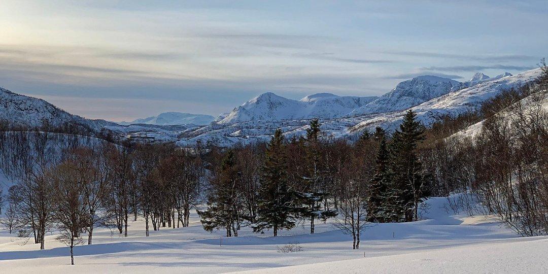 Vista hacia el sur de Skjervøy