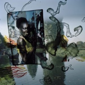Foto: Stephen Gill, aus der Serie: Talking to Ants, 2009-2013/2013, Archival pigment print © Stephen Gill / Courtesy Christophe Guye Galerie, Zürich