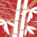 170314 Pikto NEU Featured Image