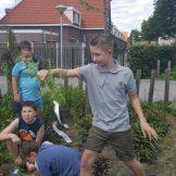 tuin werken (3)