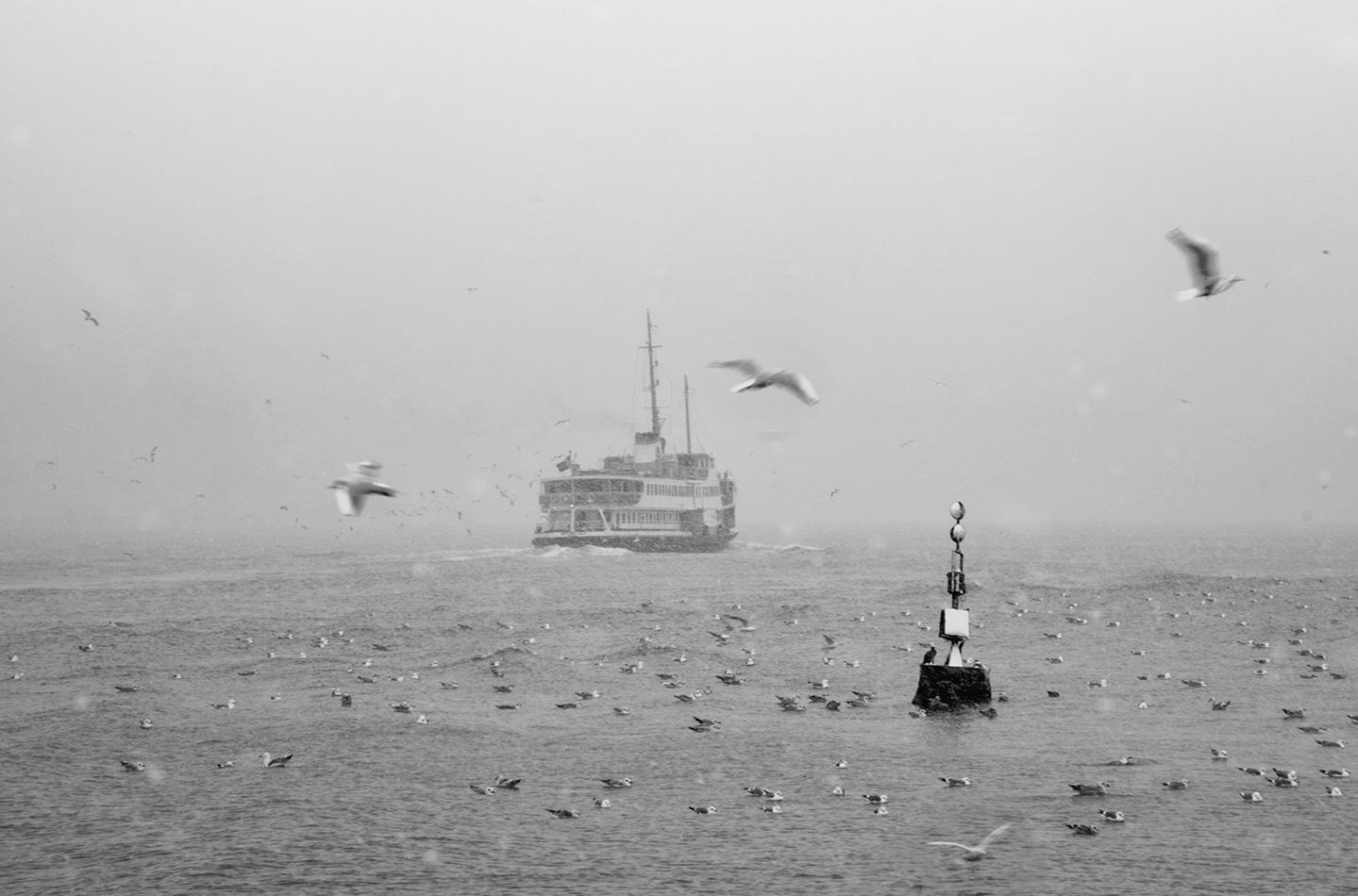 İstanbul, Özgür Çakır