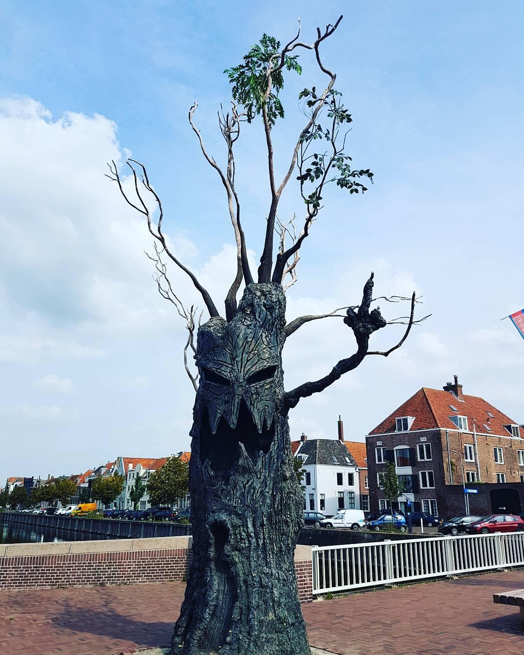 Mittelfinger in Middelburg