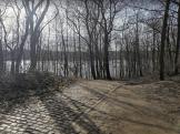 Eingefügt in Wildpark Dünnwald