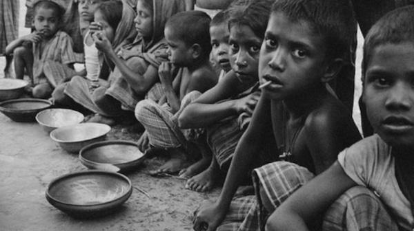 Gjennomføres klimabevegelsens krav vil vi få hungersnød.